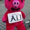 LLP13add. ☆最終日☆7/8@大阪城ホール